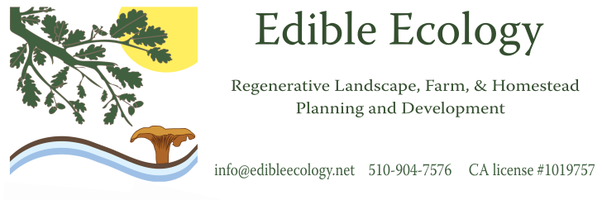 edible ecology